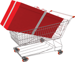 ecommerce solutions jaipur